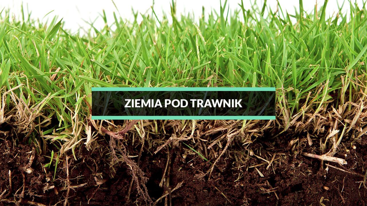 ziemia pod trawę